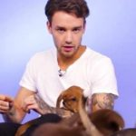 "Liam Payne: One Direction se vraća, ići ćemo na ""Made in the A.M."" turneju!"